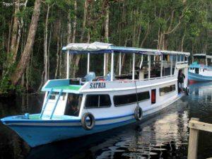 Kumai River Boat - Orang-utan cruise, Borneo