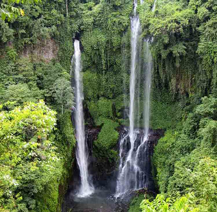 7 Beautiful Bali Waterfalls Worth Visiting!